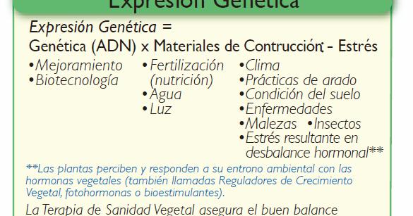 Expresión genética = Genética(ADN) * Materiales de construcción - ESTRES