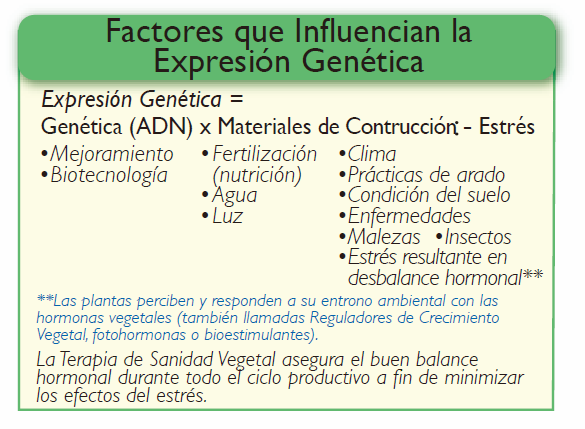 FIsiologia_vegetal_Factores_expresion_genetica