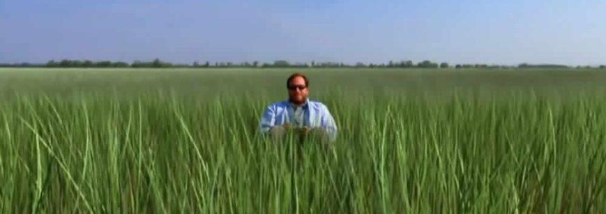 Video sobre las plantas inteligentes